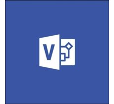 ESD Visio Pro 2019 Win AllLng download D87-07425